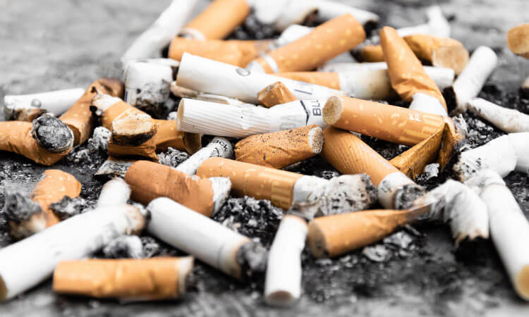 Closeup of a pile of smoked cigarettes with nicotine, that increases your risk of oral cancer and lung cancer
